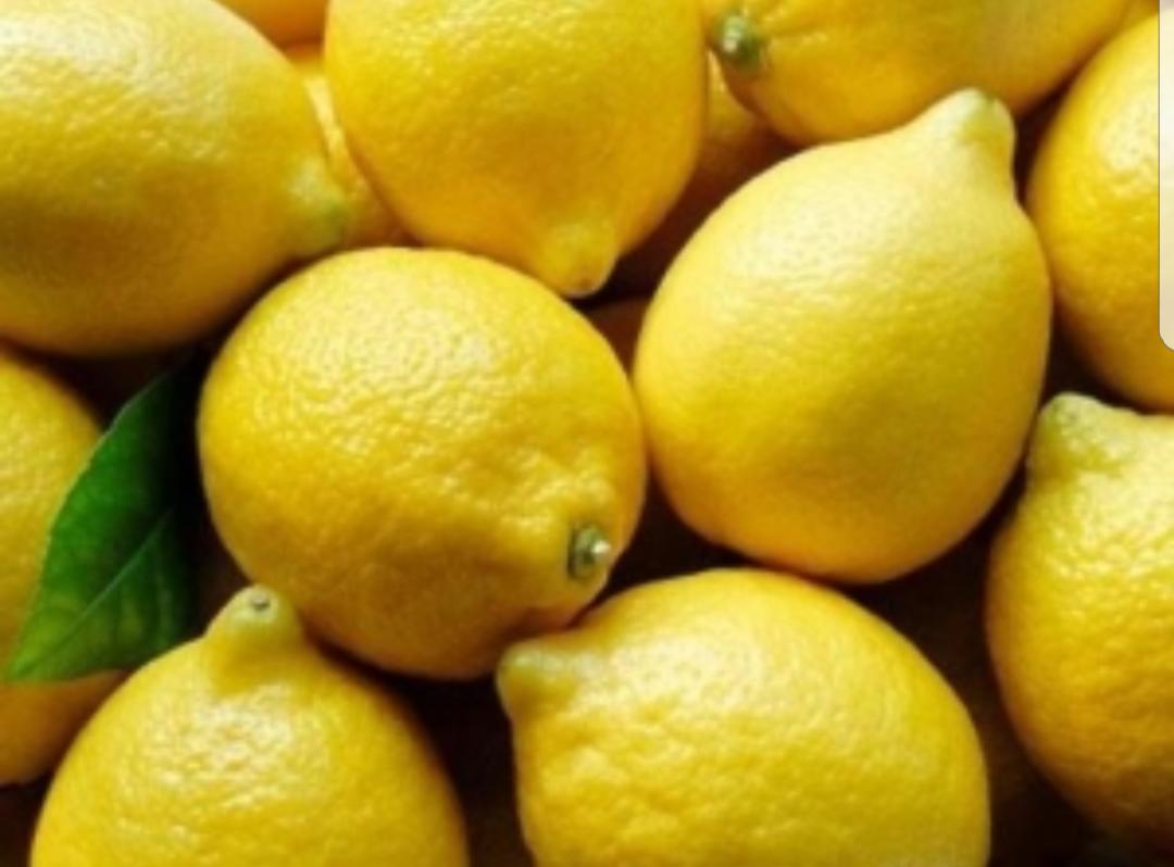 Sorbete de limon al cava thermomix tm5